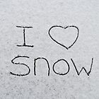 I love snow by Nicole Gushue