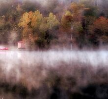 Fog At The Kayak Shack by Carolyn  Fletcher