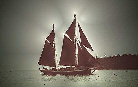 Sailing boat by lumiwa