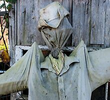 Scarecrow by David Isaacson