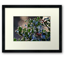 """""""It's beginning to look a lot like Christmas"""" Framed Print"""
