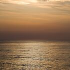 Golden Sea by diggle