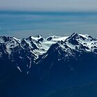 Olympic National Park : Hurricane Ridge 3 by Gstudio