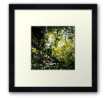 Angel Leaves Framed Print