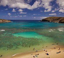 Hawaii by Edward Perry