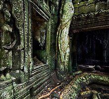 Forgotten Corridor, Cambodia by Michael Treloar