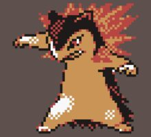Typhlosion Sprite  by Pepperleopard