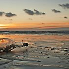 Message in a Bottle Sunset by David Alexander Elder