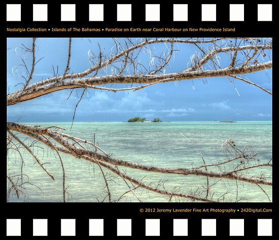 Nostalgia Collection • Islands of The Bahamas • Paradise on Earth near Coral Harbour by 242Digital