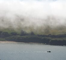 Sea fog on the Erme Estuary, South Hams, Devon, England, UK by silverportpics
