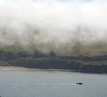 Sea fog on the Erme Estuary, South Hams, Devon, England, UK by silverportpics