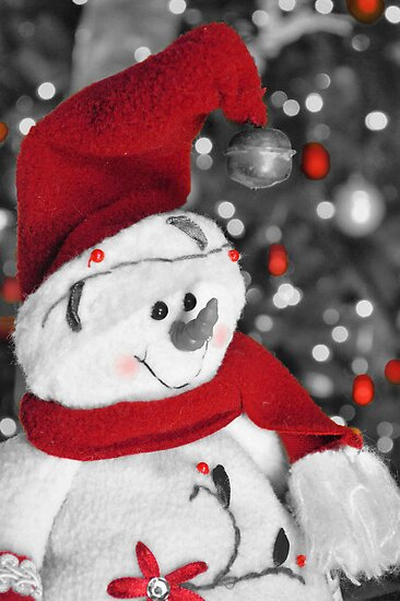 Frosty Christmas Red B&W by ©Dawne M. Dunton