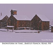 """Snowstorm in time"" Bartley Ranch, Reno, NV by Ellen  Holcomb"