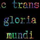 """""""Sic Transit Gloria Mundi"""" by Satvika Neti"""