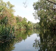 A large billabong near the Daly River, Northern Territory by Michelle Jonker