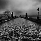 Charles Bridge by BLImages