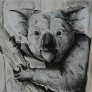 Tinted charcoal koala by gogston