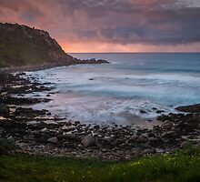 Petrel Cove by Ryan Carter