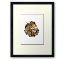 Sophie the Sleepy Hedgehog Framed Print