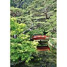Japanese garden, 2013 holiday card by Delphimages