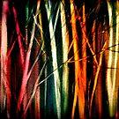 Pillars of Light.... by © Janis Zroback