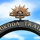 Kokoda Trail Arch by BenClarkImagery