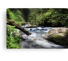 Flowing Vabuiagi River  Canvas Print