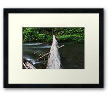 River Log Crossing Framed Print
