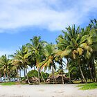 Buna Beach Palm Trees  by BenClarkImagery
