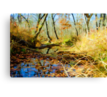 Low Water Creek Canvas Print