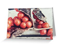 Seed Pods III Greeting Card