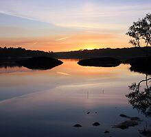 serenity at cudgen creek ... by gail woodbury