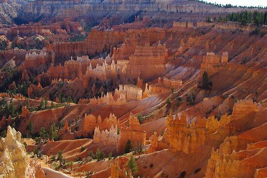 Bryce Canyon, Utah by Claudio Del Luongo