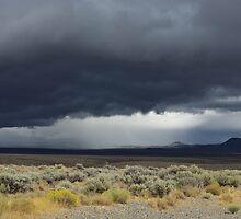 Desert storm, Nevada by Claudio Del Luongo