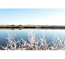 frosty twigs in snow against cold blue sky and river Photographic Print