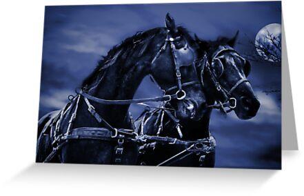 the highwayman by carol brandt