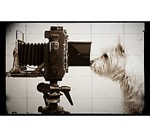 Vintage Pho Dog Grapher with View Camera Photographic Print