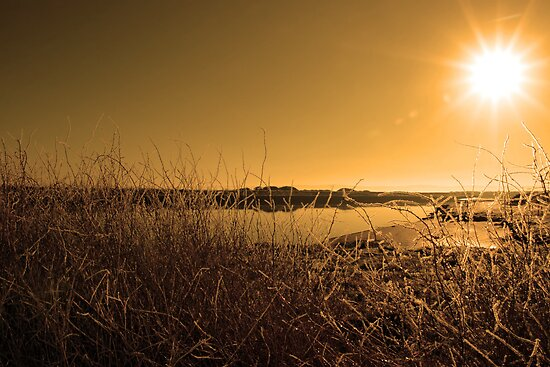 icy twigs and branches in snow against orange sunrise and river by morrbyte