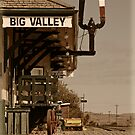 Big Valley Rail Station by Skabou