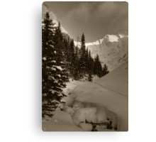 Deep snowy creek Canvas Print