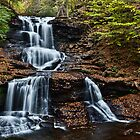 Tuscarora Falls by Marty Straub