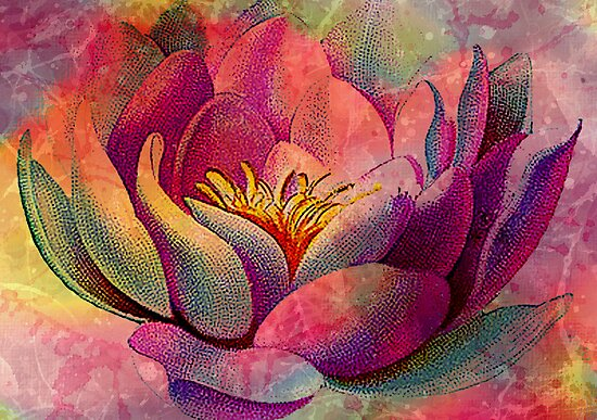 LOVELY LOTUS 2 by Tammera
