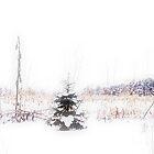 First Snow by Juli Lyons