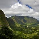 Pali by Edward Perry