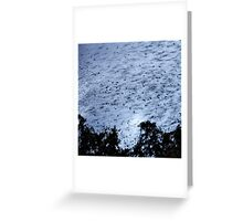 Avian Storm Greeting Card