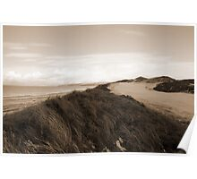 white icy snow covered sepia golf course and cliffs Poster