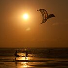 Kites at Sunset by Mark Hood