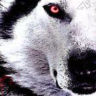 NYFU Wolf Poster by GuUZi