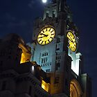 Liver Building At Night by Paul Madden