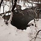 Winter River by Skye Hohmann